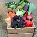 Seasonal Vegetable Box additional 1