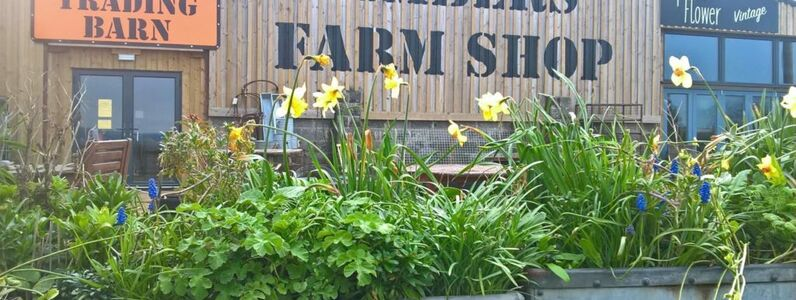 Kimbers' Farmers Diary - April 2020